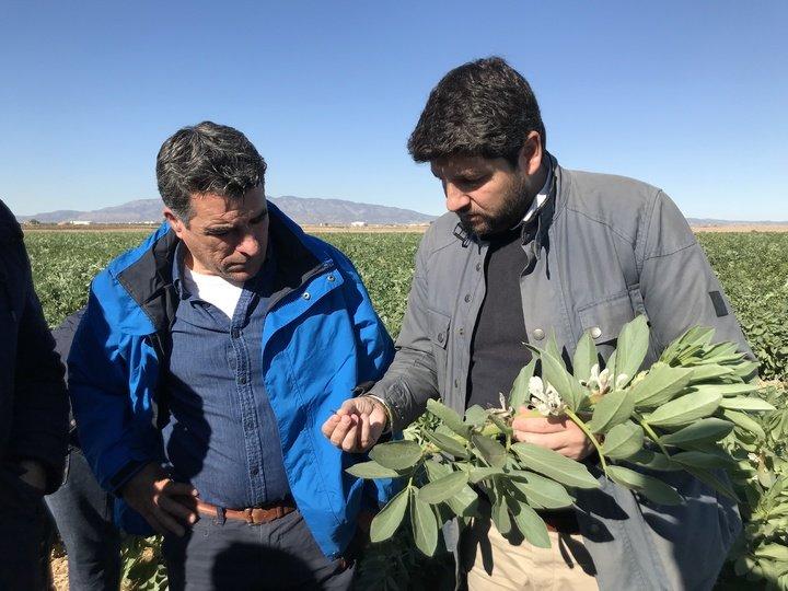 presidente Murcia Fernando López Miras visita finca campo daños Heladas