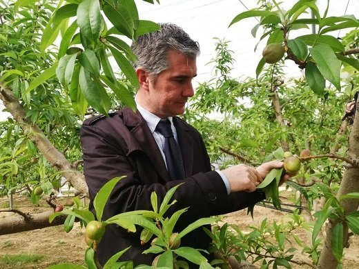 murcia consejero Agricultura Ecológica