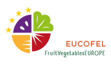 EUCOFEL_Ingles logo
