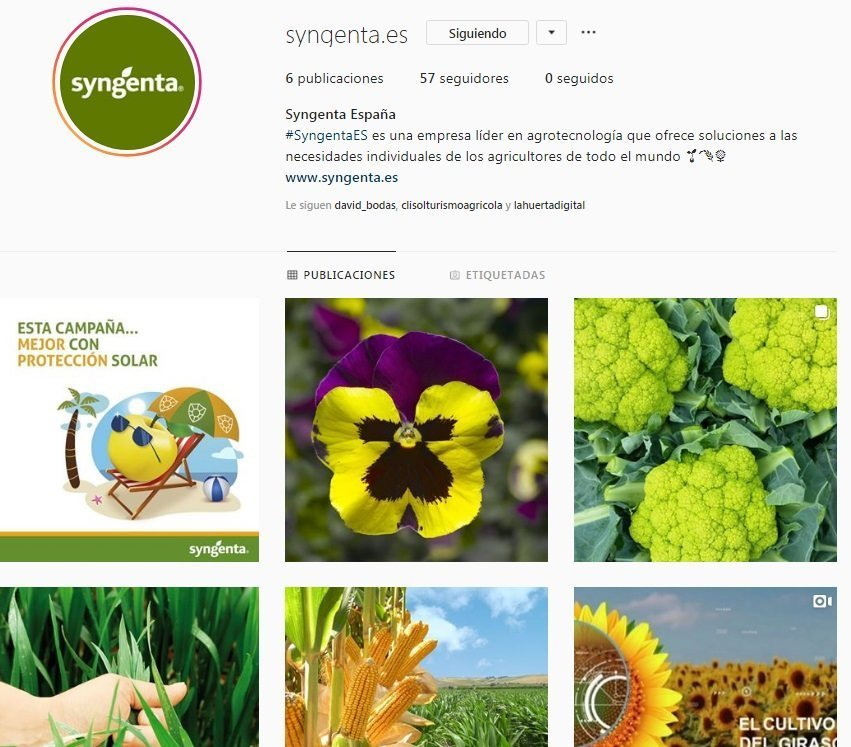 instagram syngenta