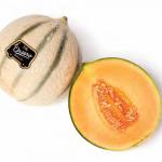 melon cantalup orsero