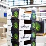 Nueva_Goliath caja packaging smurfit kappa