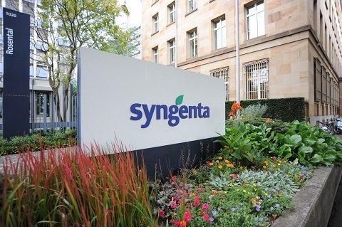 hires-rosental SYNGENTA