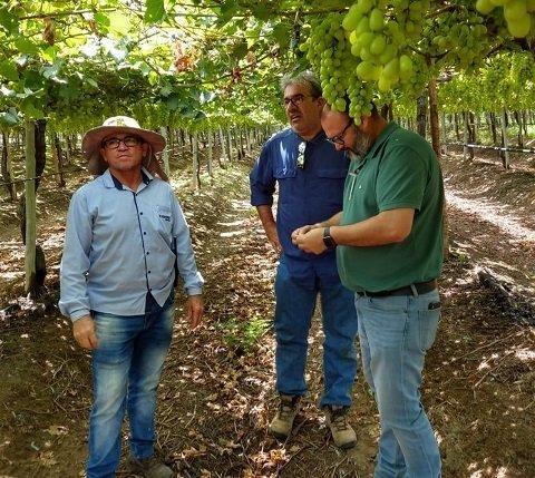 Ángel Ruiz Serna, gerente de Ecoculture