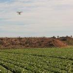 jornada_pwc proesxport campo dron