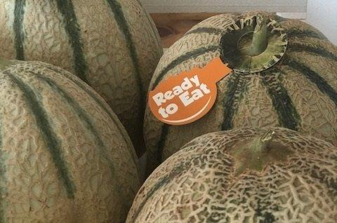 ready to eat melon cantaloup rijk zwaan