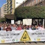 manifestacion 19n almeria