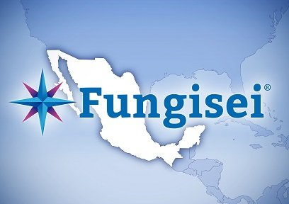 seipasa Fungisei