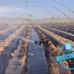 agua huelva regantes palos 100% legal