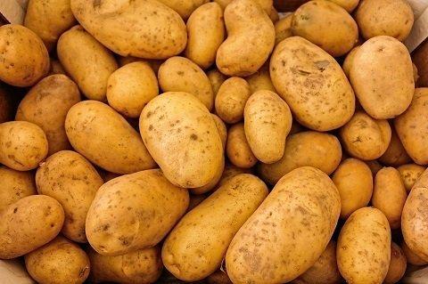 patata agria uccl