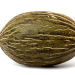 rijk zwaan melon