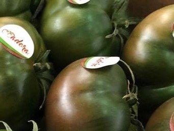 comprar tomate adora