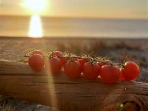 KEOPS - USAR SOLO PARA ELLOS agricultura ecologica