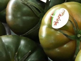 precio tomate adora