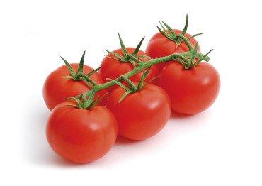 Seminis tomate