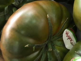 tomate adora clause