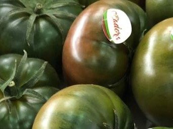 tomate adora semillas
