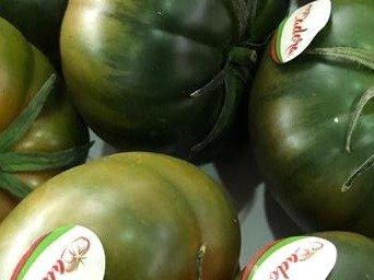 tomate raf adora