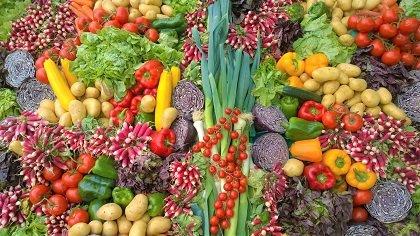 exportaciones agroalimentarias frutas hortalizas