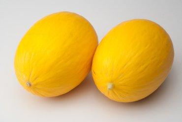 melon Piel de Sol