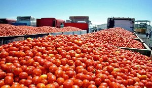 FOTO PSOE CAMION TOMATES