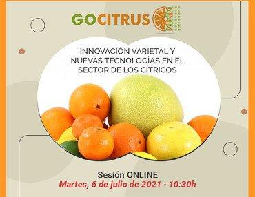 gocitrus