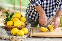 El limon es un citrico muy versatil_ailimpo
