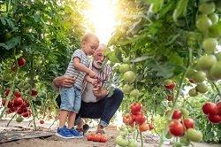 GRUPO AGROPONIENTE agricultor Novedades inicio campaña