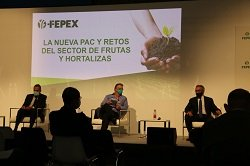 fepex charla PAC fruit attraction